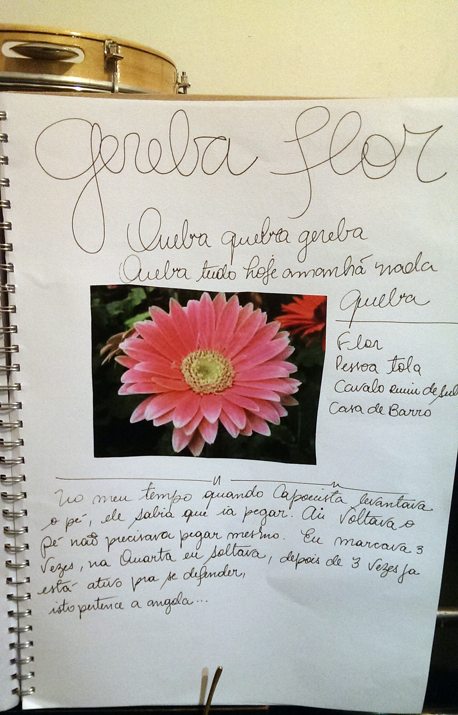 Gereba has various meanings: flower, foolish person, untamable horse, mud hut. When 'Quebra Gereba' is played in the roda, take it to mean: 'give it all, the time is now!'. When Mestre was young if that song played it would mean someone was going to end in hospital, or with some bump or another! And because there were no ice packs by then, the injured would end up with their head under the cold tap water :)